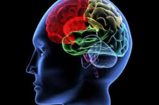 cognitive behavioural therapy CBT