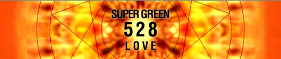 SuperGreen528hz: An Interview with Susan Wilesmith