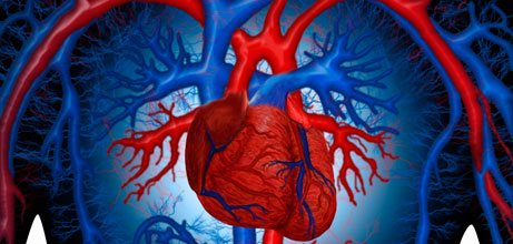 3 tips to lower the risk factors of developing cardiovascular diseases