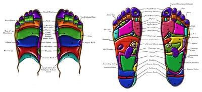 Foot Reflexology Pressure Points Chart – Body Feet Point Map