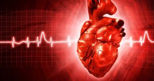 Abnormal Heart Rhythms: Are You at Risk for Arrhythmia?